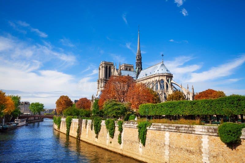 Notre Dame de Paris a lo largo del río Sena imagen de archivo