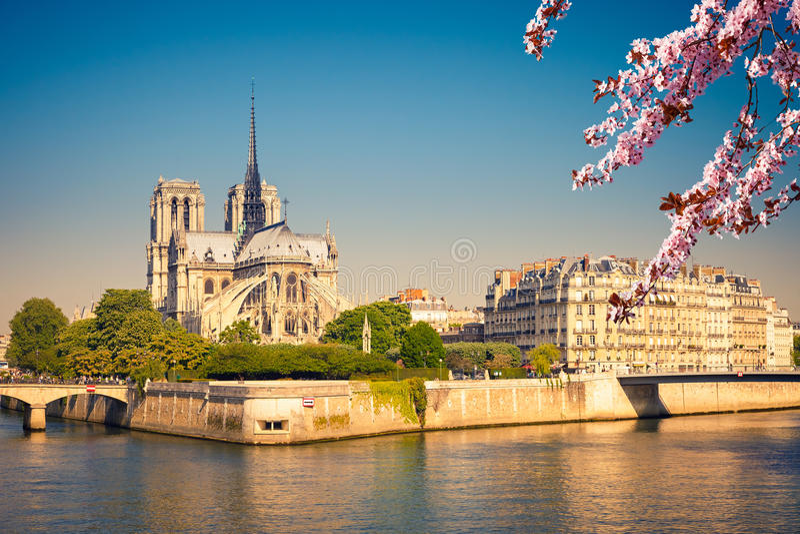Notre Dame de Paris na mola foto de stock royalty free