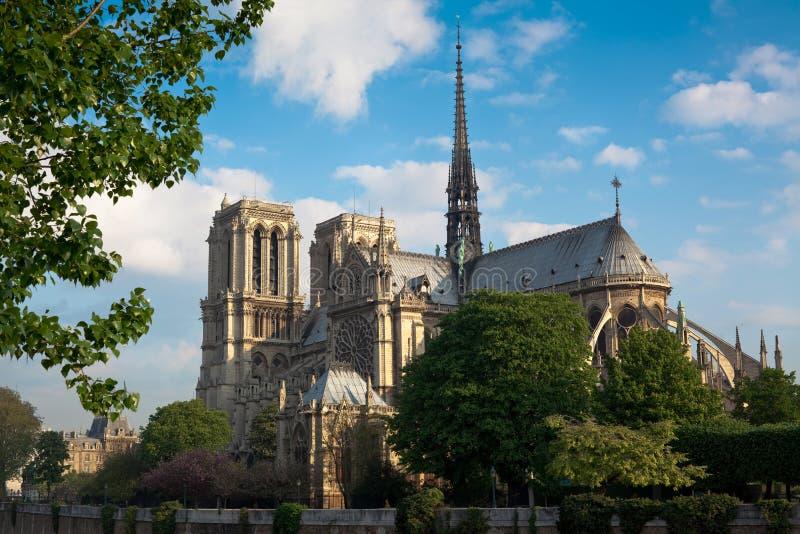 Notre Dame de Paris, Parijs, Frankrijk royalty-vrije stock fotografie