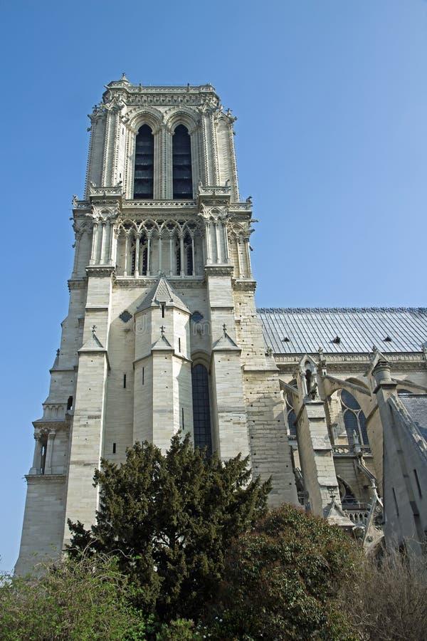 Notre-Dame de Paris (Paris France)