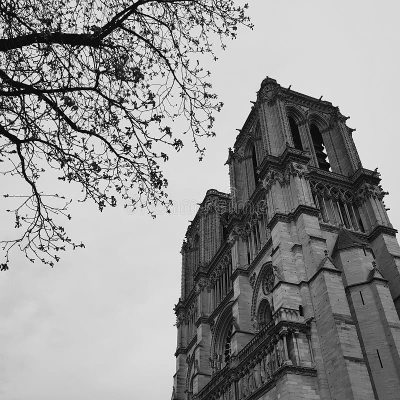 Notre Dame de Paris, sikt av den huvudsakliga domkyrkan av Frankrike och Paris arkivfoto