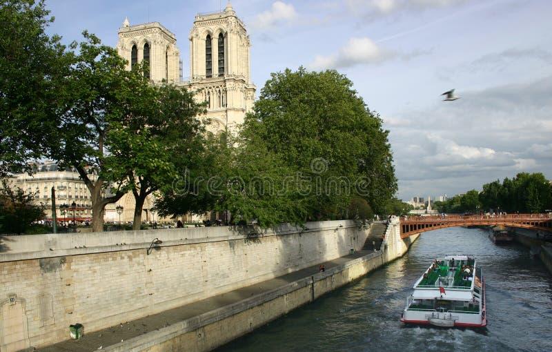 Notre Dame de Paris van de rivier stock afbeelding