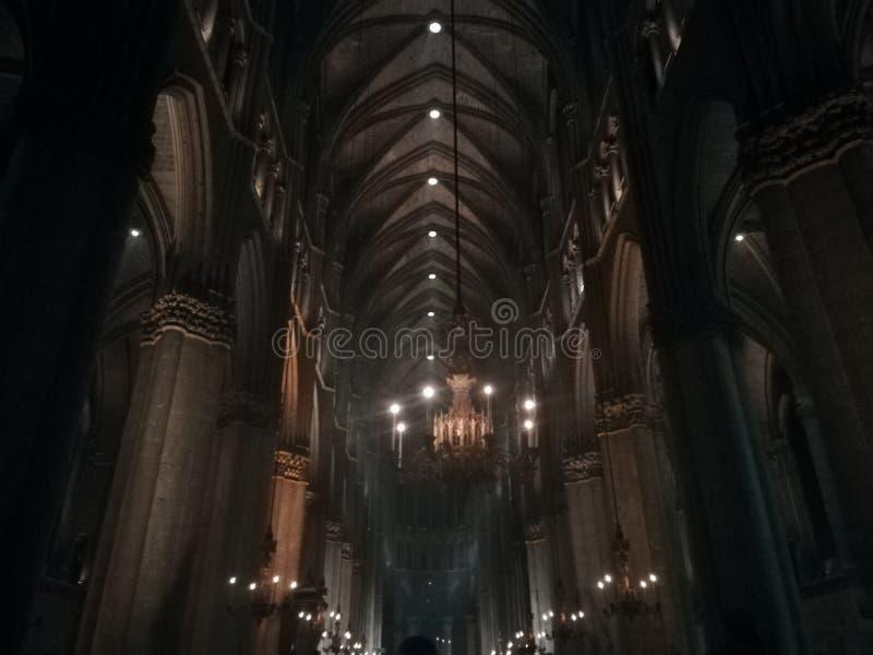 Notre Dame de Reims royaltyfri foto