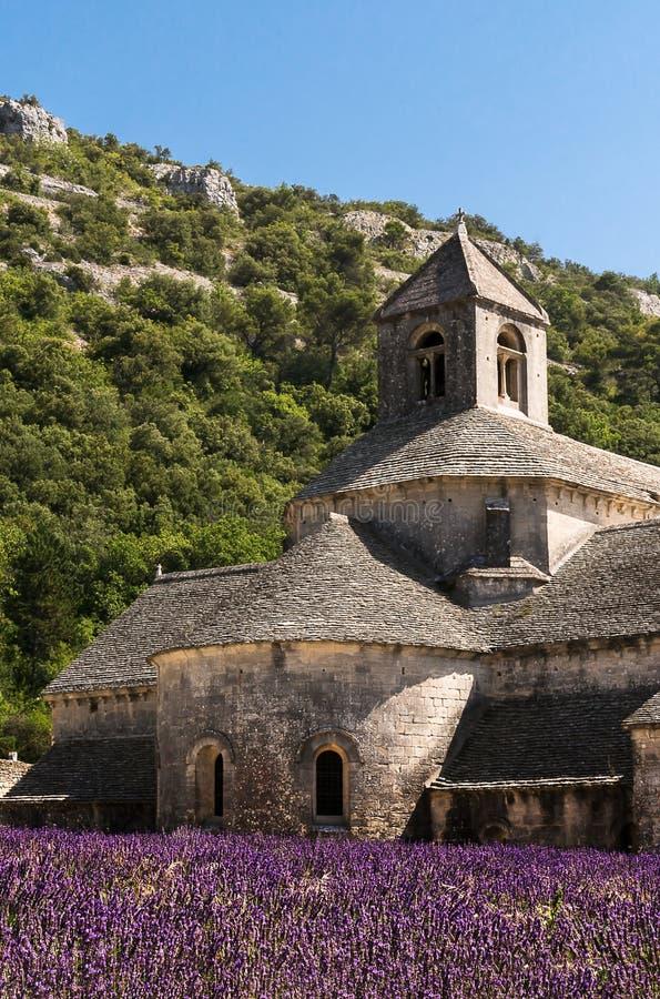 Notre Dame de Senanque Abbey在淡紫色的心脏调遣 库存图片