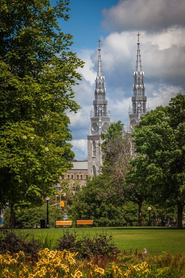 Notre-Dame domkyrkabasilika, Ottawa, Kanada royaltyfri bild
