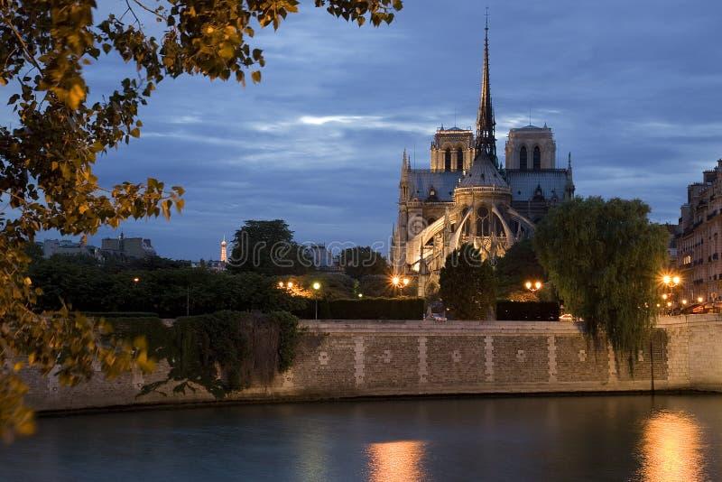 Notre Dame em a noite imagens de stock royalty free