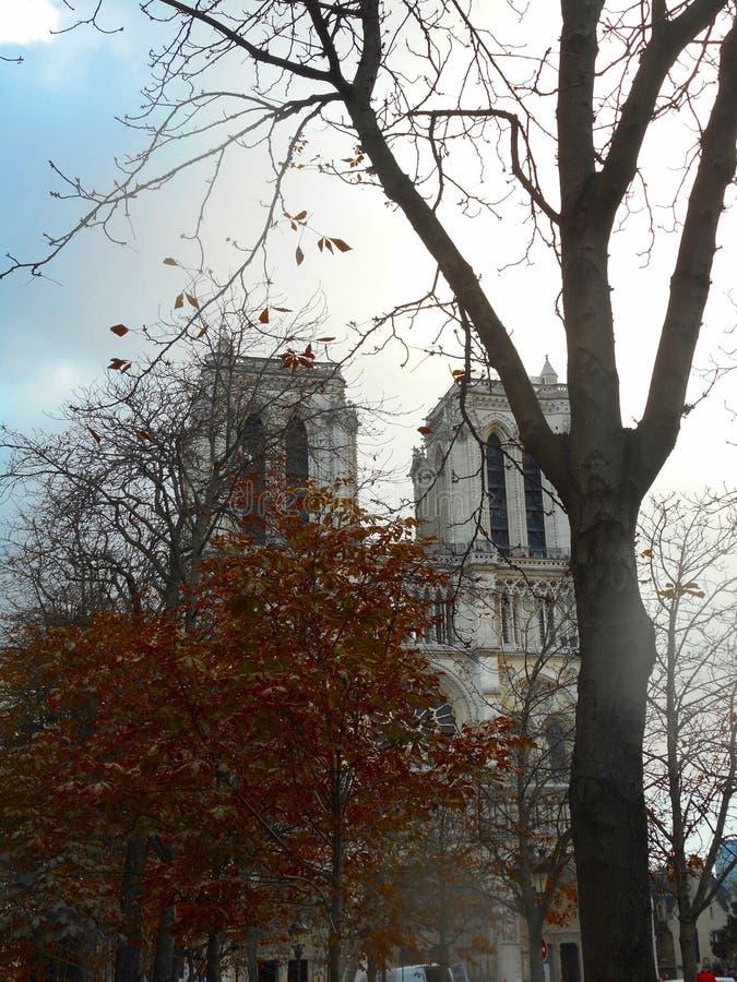 Notre Dame i November royaltyfri fotografi