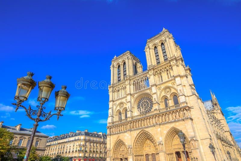Notre Dame med lampan royaltyfria bilder