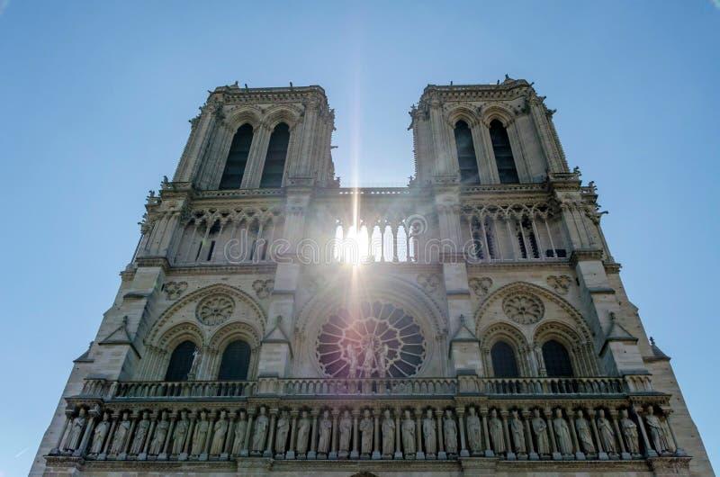 Notre-Dame med solilsken blick arkivbild