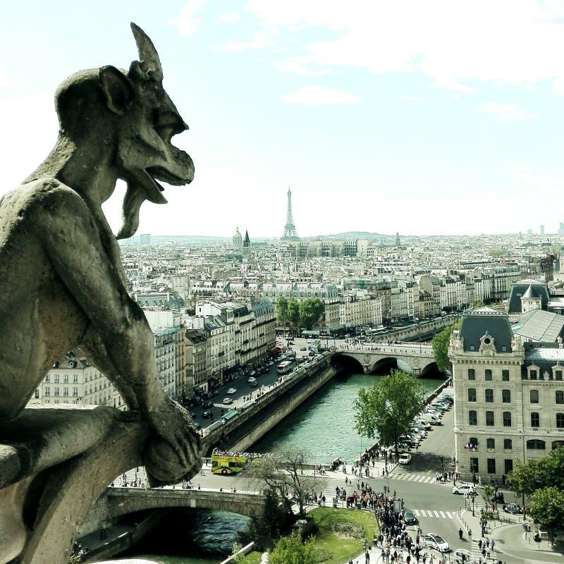 Notre Dame-mening met watermorserij aan de Toren van Parijs en van Eiffel stock foto