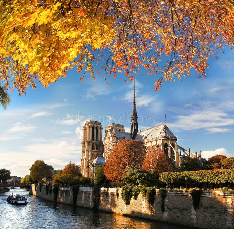 Notre Dame met boot op Zegen in Parijs, Frankrijk stock foto