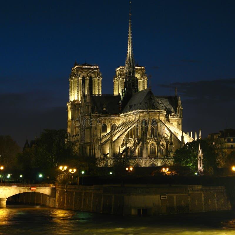 Notre Dame nachts 02, Paris, Frankreich lizenzfreies stockbild