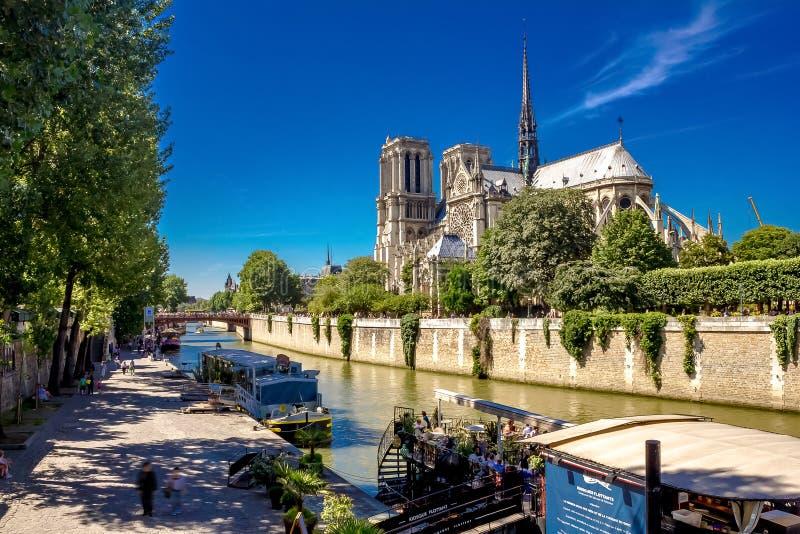 Notre-Dame och Seina royaltyfri fotografi