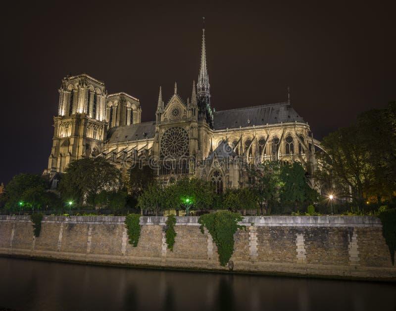 Notre-Dame på natten arkivbilder