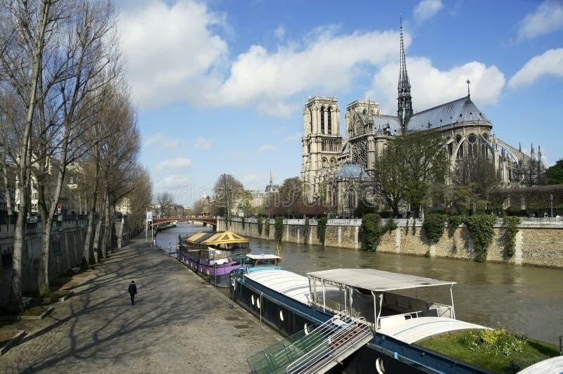 Notre Dame, Parigi immagini stock