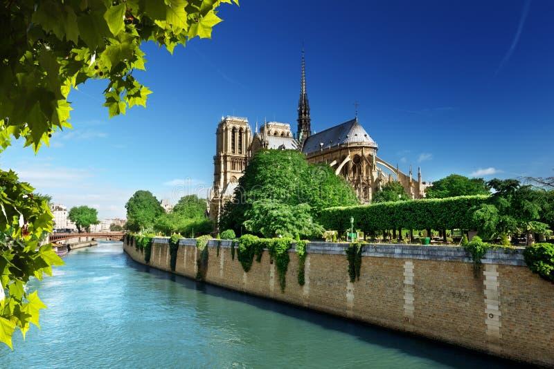 Notre Dame Paris immagine stock libera da diritti