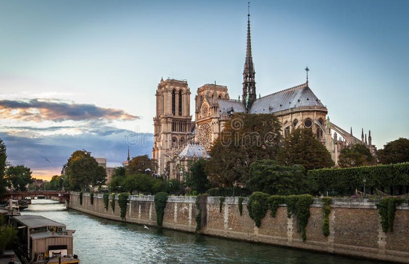 Notre Dame Paris arkivbilder
