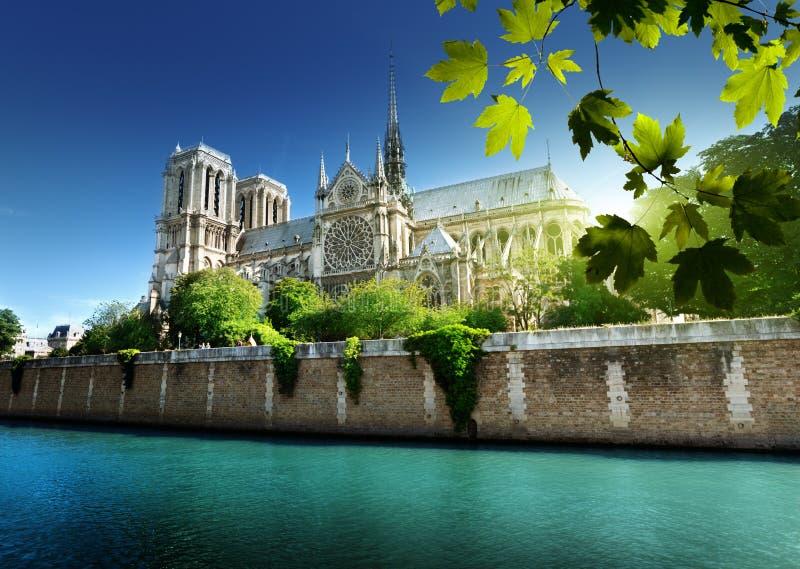 Notre Dame Paris Frankrike royaltyfri foto