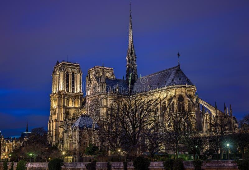 Notre Dame Paris på den blåa timmen arkivfoto