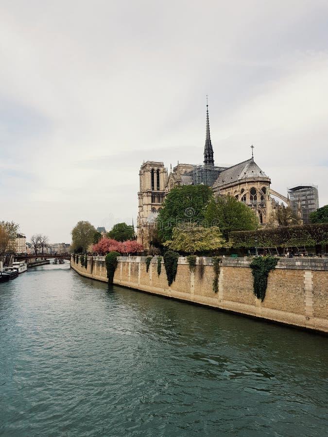 View of the Notre-Dame de Paris, the most important cathedral in France. Notre-dame paris vnotre-dame vinotre-dame vienotre-dame viewnotre-dame onotre-dame royalty free stock image