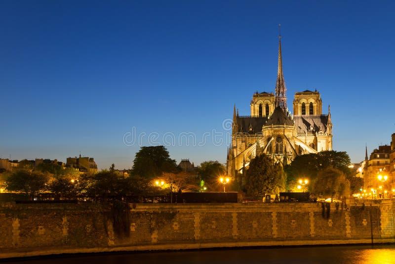 Notre-Dame skymning royaltyfri bild