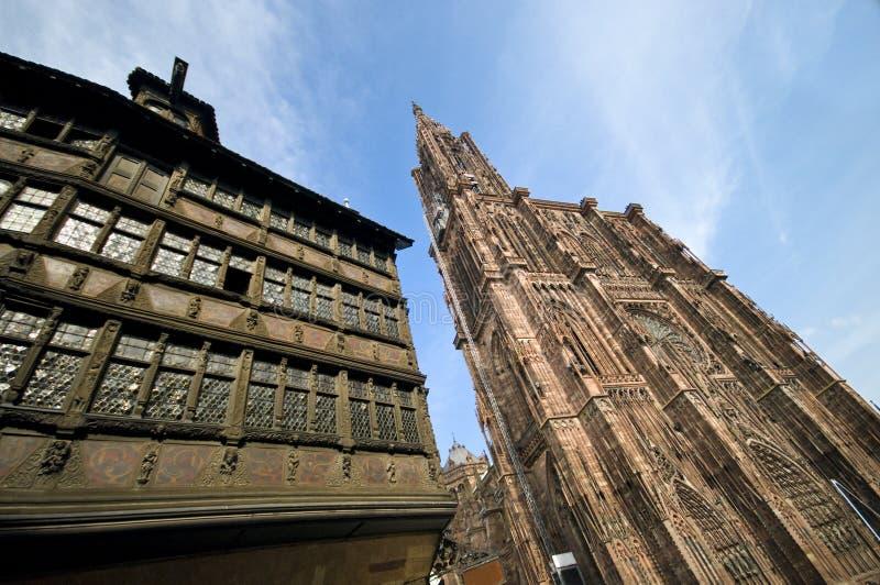 Notre Dame Straßburg lizenzfreie stockbilder