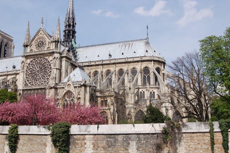 Notre- Damekathedrale in Paris stockfotografie