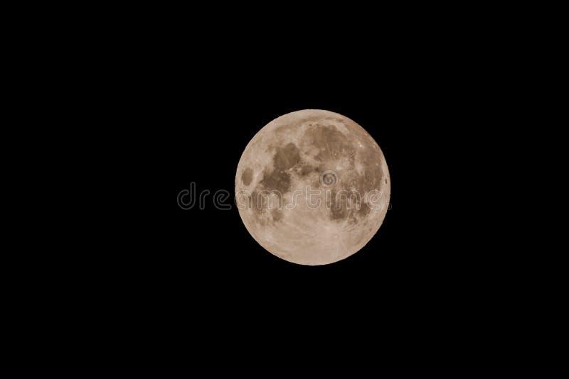 Notre lune photos libres de droits