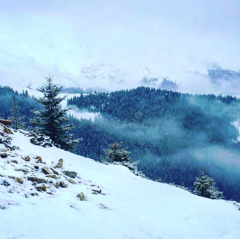 Notre montagne couverte de neige photo stock