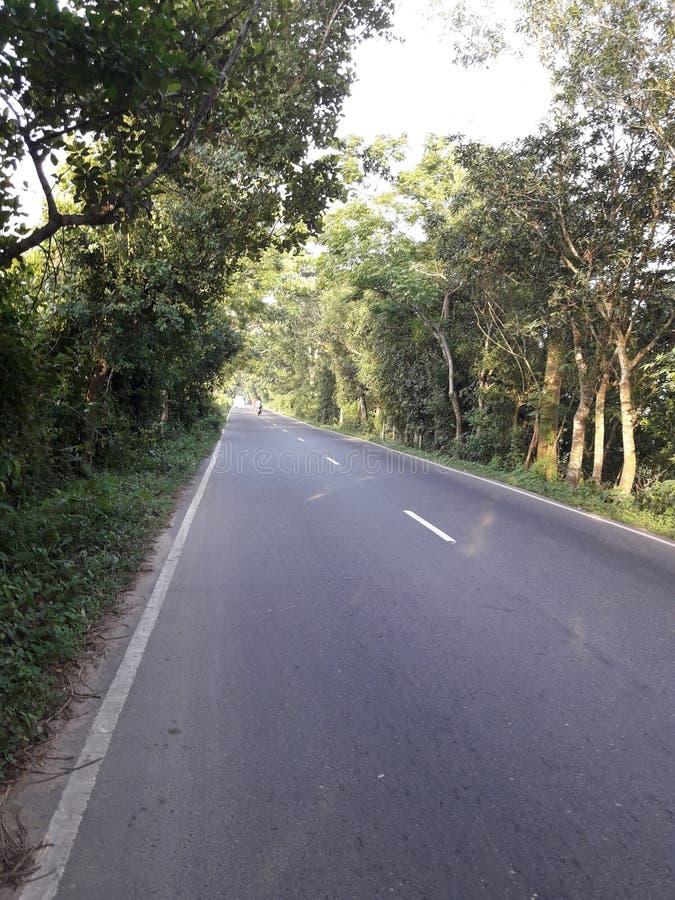 Notre route à la maison aiment un costomd rêveur photo libre de droits