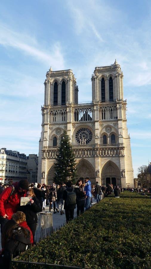notredom de la catedral fotografía de archivo libre de regalías