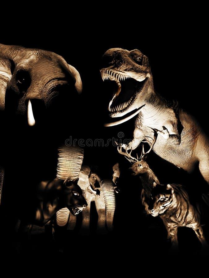 Notte al museo delle scienze naturali fotografie stock libere da diritti