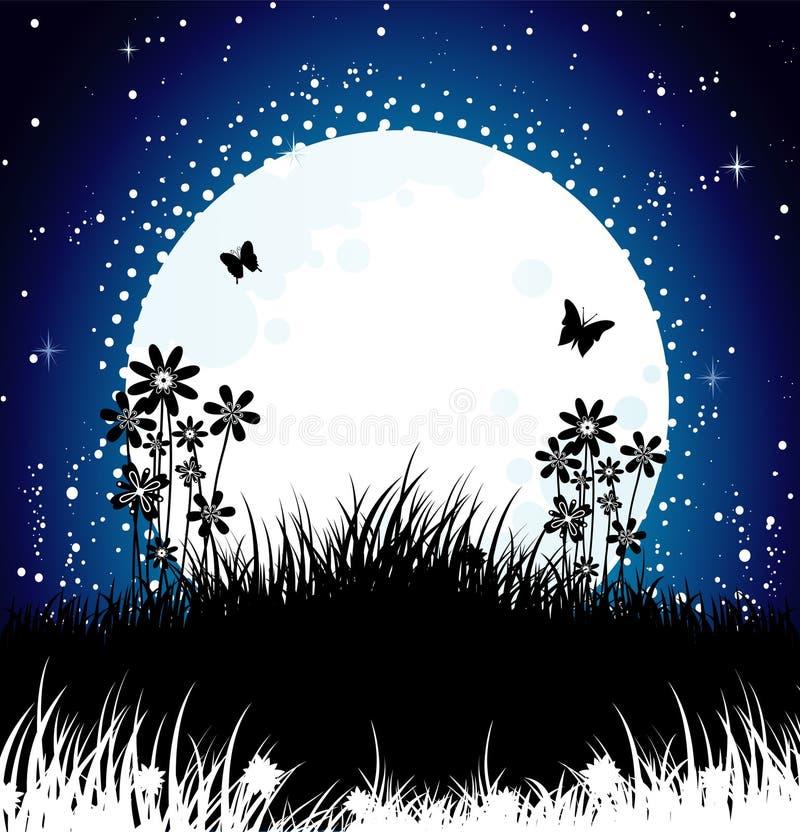 Notte della luna illustrazione vettoriale