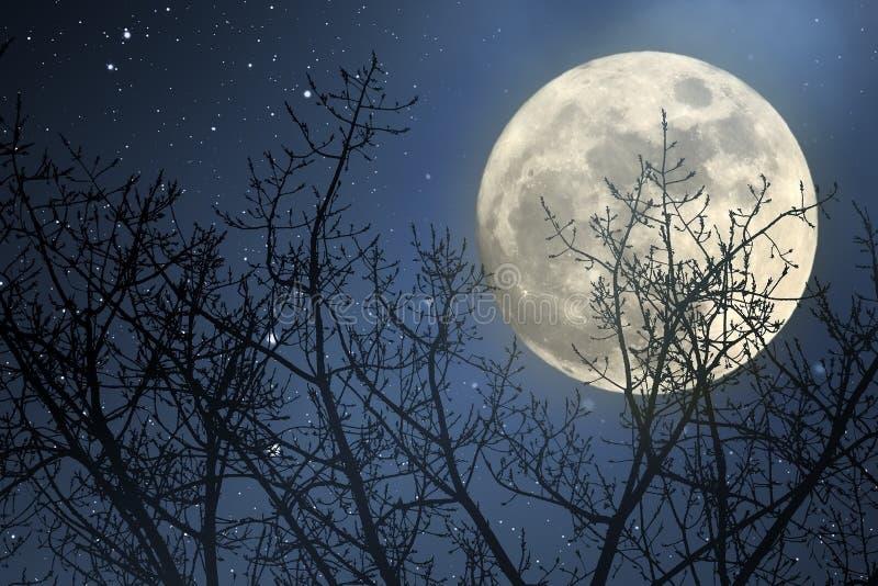 Notte della luna piena immagini stock libere da diritti