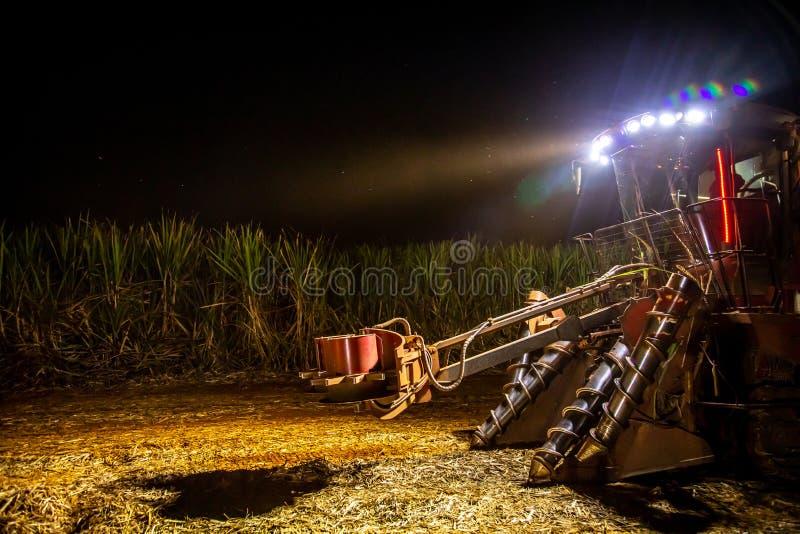 Notte della piantagione più hasvest della canna da zucchero fotografie stock