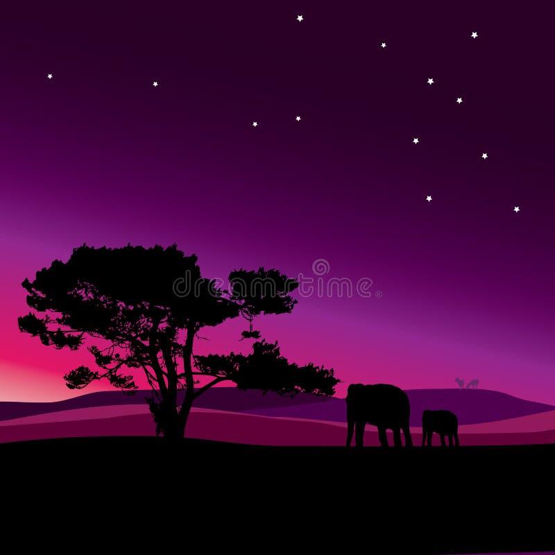 Notte della stella della fauna selvatica nel vettore dell'Africa royalty illustrazione gratis