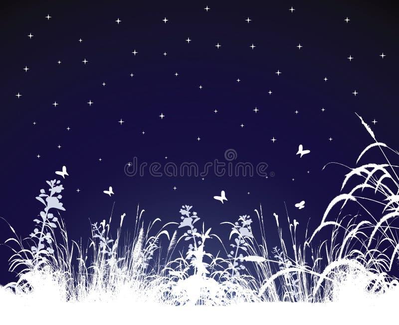 Notte di estate illustrazione vettoriale