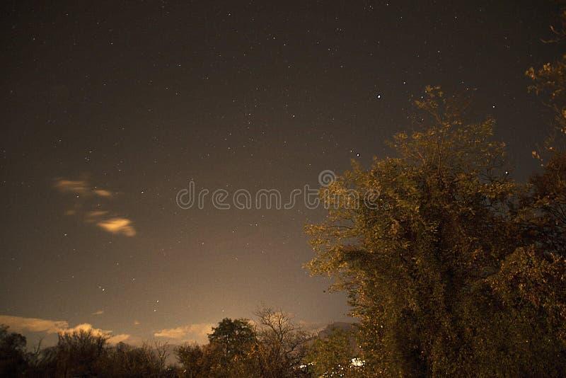 Notte di Lighty fotografia stock