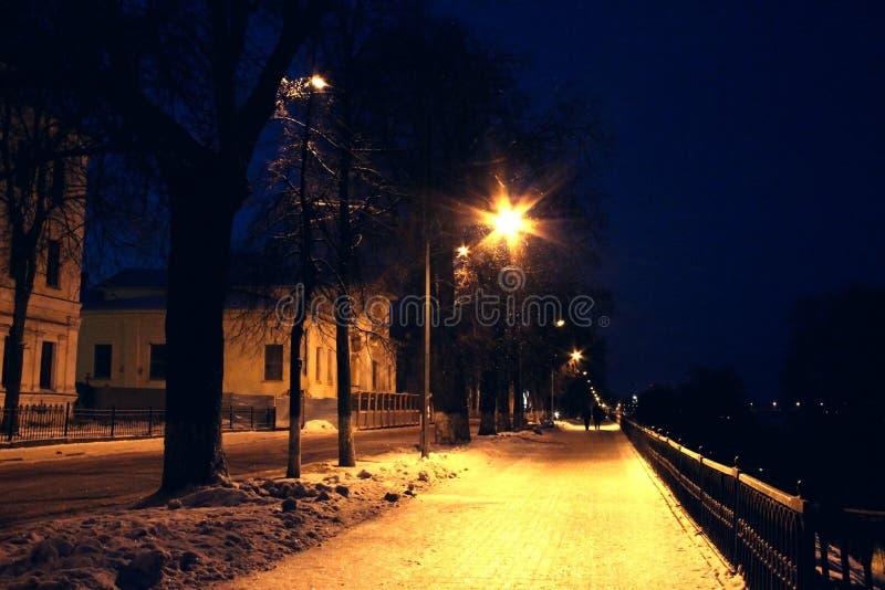 Notte di Snowy fotografie stock
