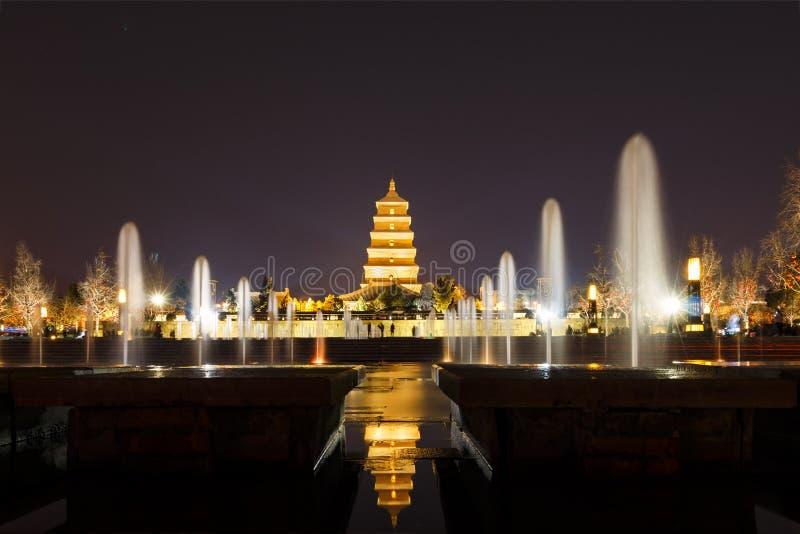 Notte gigante della pagoda dell'oca selvatica fotografia stock libera da diritti