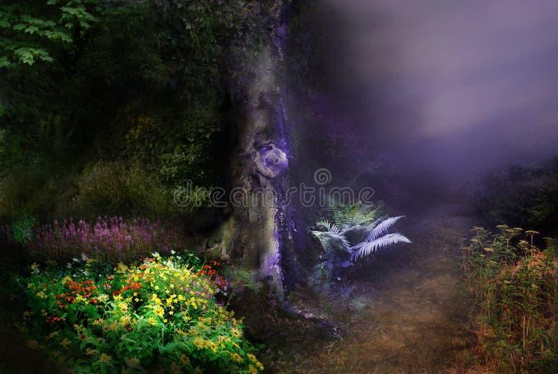 Notte magica della foresta fotografia stock