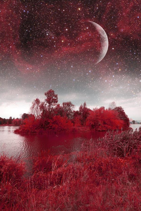 Notte mistica della molla fotografie stock