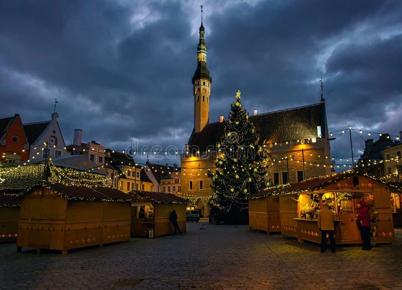 Notte nella capitale dell'Estonia fotografia stock libera da diritti