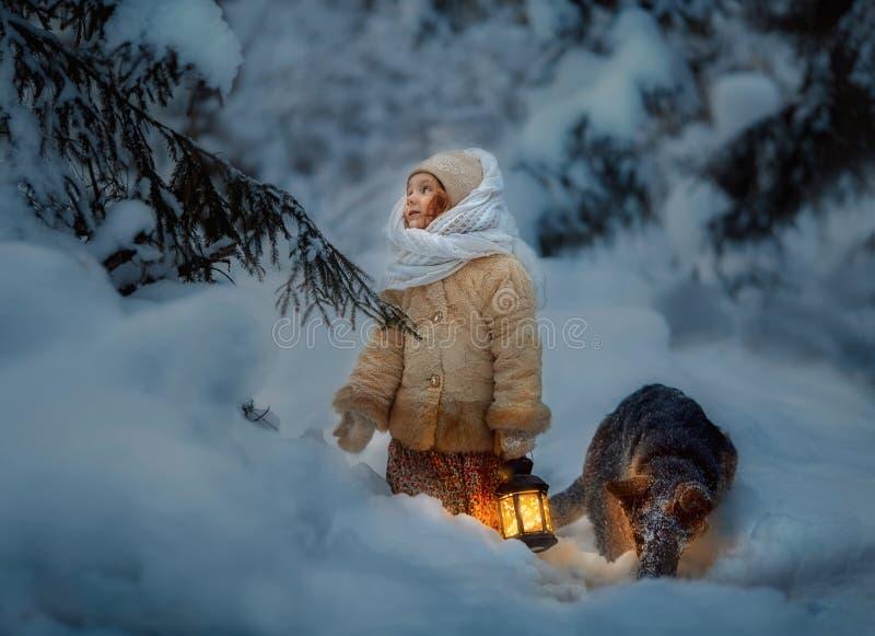 Notte nella foresta nevosa immagine stock