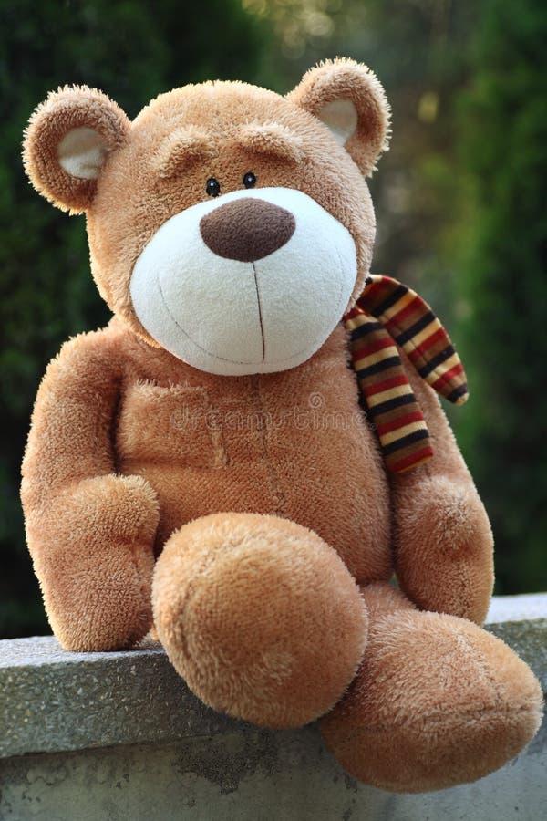 nounours d'ours photos libres de droits