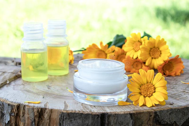 Nourishing cream with calendula extract with fresh calendula flowers on a wooden background in nature stock photography