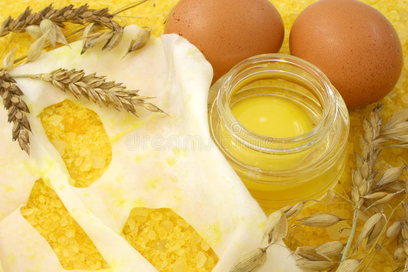 Nourishing Mask. Nourishing facial mask from an egg royalty free stock photos