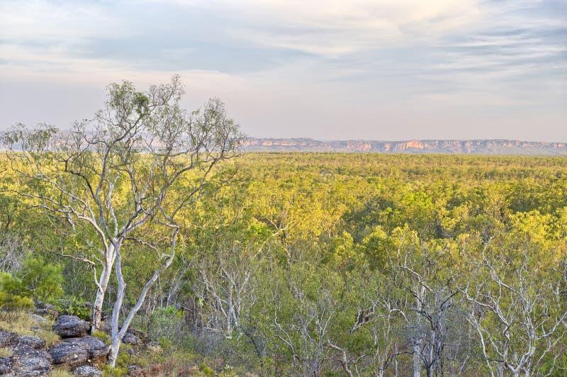 Nourlangie-Felsen, Australien stockbild