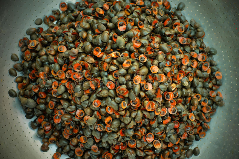 Nourriture asiatique traditionnelle de fruits de mer images libres de droits