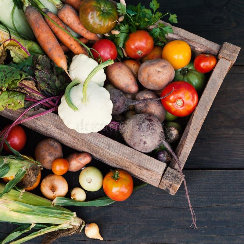 Nourriture d'alimentation saine de Vegan, fond végétarien d'agriculture photo stock